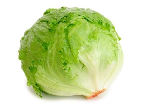 Iceberg Lettuce – Spain