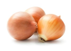 Onion- Brown- Spain
