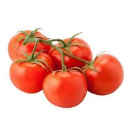 Tomatoes-Vine-Holland-4 Pieces Per Pack(Large Size)