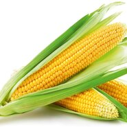 Sweet Corn-Bulk Buy-12 Kgs