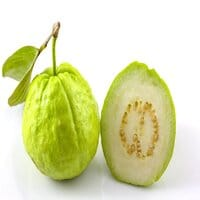 Guava-Thailand