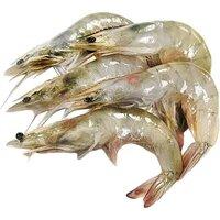Wild Shrimps Fresh-(25/30 Pcs)-500g